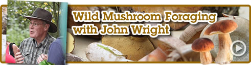 Mushroom Foraging with John Wright